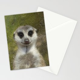 Funny Meerkat Stationery Cards