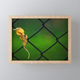 A little elf Framed Mini Art Print