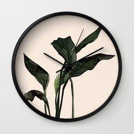 tropical plant Wall Clock