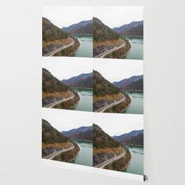 german alps road lake trees forrest drone aerial shot Wallpaper