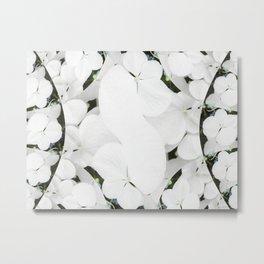 Hydrangeas - White & Blue Metal Print