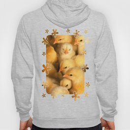 Clutch of Yellow Fluffy Chicks With Decorative Border Hoody