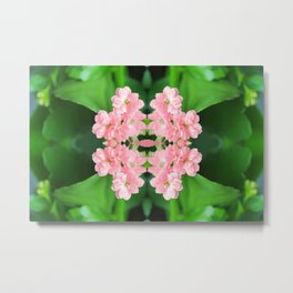 Fresh Rose Quartz color Kalanchoe flowers surreal shaped symmetrical kaleidoscope Metal Print