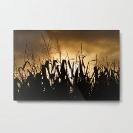 Corn field silhouettes Metal Print