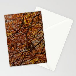 autumm' colours Stationery Cards