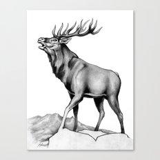 The Challenge Canvas Print