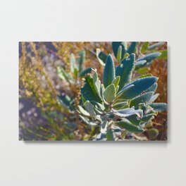 Mountain Blossom Metal Print