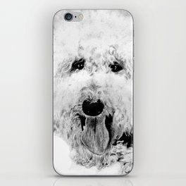 Labradoodle iPhone Skin