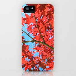 Reds of Fall - 2 iPhone Case