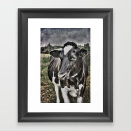 Melancholic Black White Dutch Cow Framed Art Print