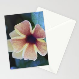 Longwood Gardens Autumn Series 335 Stationery Cards