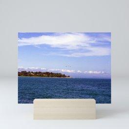 Lone Gull Over Lake Michigan Mini Art Print