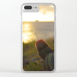 Cactus in the Sunset - Sint Maarten Clear iPhone Case