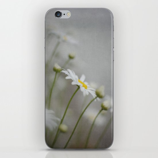 Daises  iPhone & iPod Skin