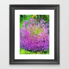 Dewey Allium Framed Art Print