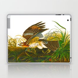 Winter Hawk Laptop & iPad Skin