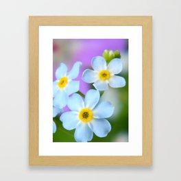 Floral Beauty #6 Framed Art Print
