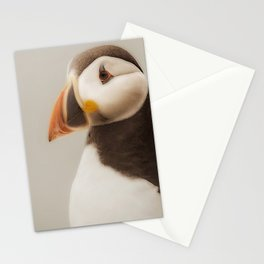 Puffin close up Stationery Cards