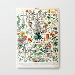 Adolphe Millot - Fleurs B - French vintage poster Metal Print