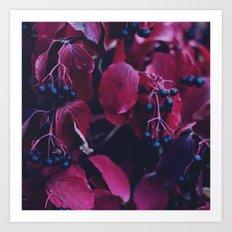 Leaves V2 Art Print