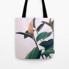 Ficus Elastica #4 Tote Bag