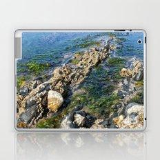 Rock pool Laptop & iPad Skin
