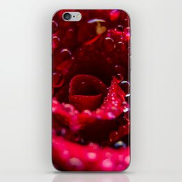 Raindrops on a Deep Red Rose in Bloom iPhone Skin
