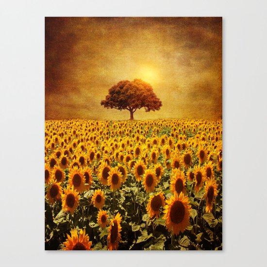 lone tree & sunflowers field (II) Canvas Print