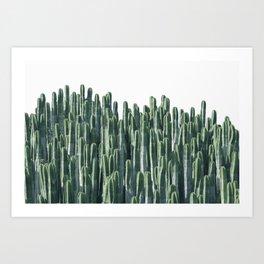Teal Cactus Desert Art Print