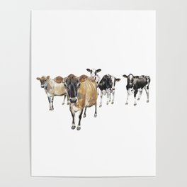 Cow Crowd Poster