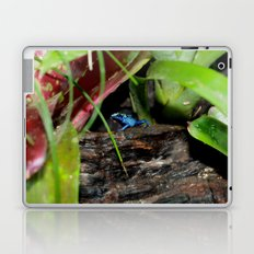 Poison Dart Frog- Young Froglet Laptop & iPad Skin