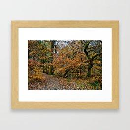 Roddy Woods Framed Art Print