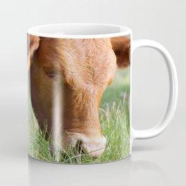 Ellen Grazing @ Happy Hooves Farm Sanctuary Australia Coffee Mug