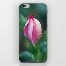 Hibiscus Bud iPhone Skin