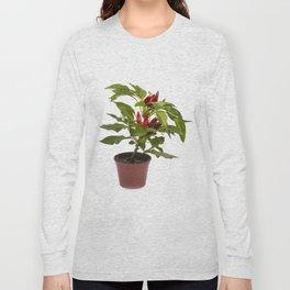 Shrub decorative pepper Kapsicum on a white background Long Sleeve T-shirt