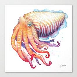 Cuttlefish Canvas Print