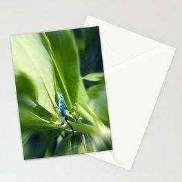 Sapphire Blue Little Lizard in Costa Rica Rainforest Stationery Cards