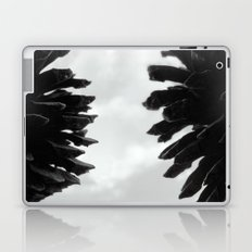 Pine Cones Laptop & iPad Skin