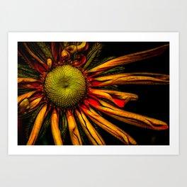 Aglow Art Print