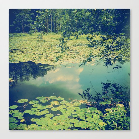Lily Pad Pond Canvas Print