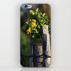 Yellow flower and wood fence iPhone & iPod Skin