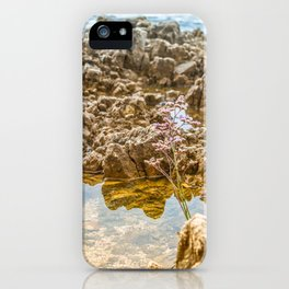 Beautiful rocky beach with lonely flower in Istria, Croatia iPhone Case