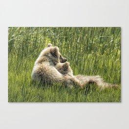 Best Friends Fur Ever - Bear Cubs, No. 8 Canvas Print