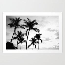 Palm Tree Noir #54 Art Print