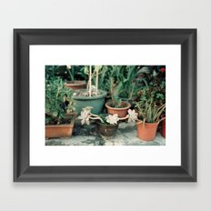 Roadside Greenery Framed Art Print