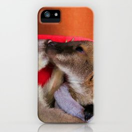 First Love  - Wallaby Babies iPhone Case