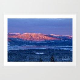Purple Mountains Majesty  Bear, Mowglis, Oregon Art Print