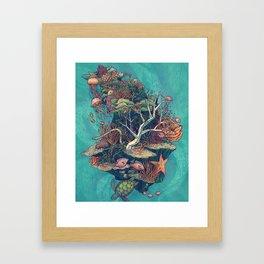 Coral Communities Framed Art Print