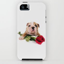English Bulldog Puppy with Rose iPhone Case