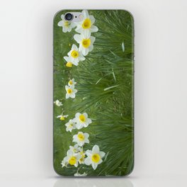 White Daffodils iPhone Skin